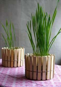 DIY Crafts - Clothespin Planter Tutorial and Rustic Home Decor Ideas