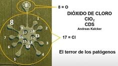 Every crop circle is a pictorial message for us. There may be a few messages that can be deciphered - here's one possible one for the 'covid designed' crop circle.  ClO2 is from the periodic table.  This is derived from the total number of overall shapes, protrusions & circles. 2, 8 & 17.