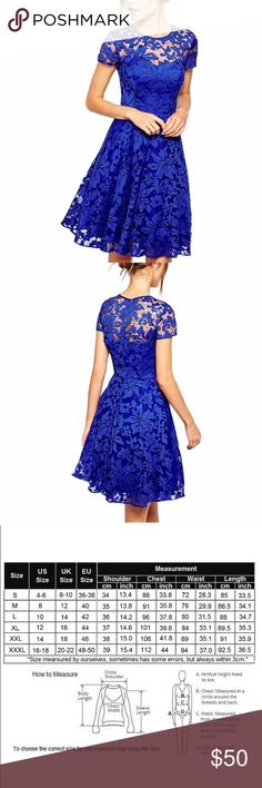 Blue lace shirt sleeve party dress Royal blue shirt sleeve lace party cocktail dress. So cute can we worn casual for the daytime or dressed up for a night out or wedding Dresses Mini