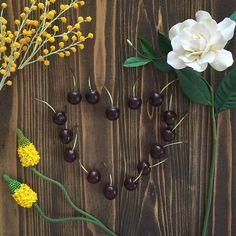 Dark Cherries😋🍒🌿 . 4月からスタートしたDeco Clay Craftの新コース「パーソナルスタイルギフトコース」のカリキュラムの1つ、チェリーを作りました♪ . 本物も今が旬ですね!😍 . . #decopsgcourse #decoclaycraftacademy #decoclay #claycraftbydeco #clayflowers #cherry #gardenia #bulbinella #mimosa #flower #fruit #handmade #パーソナルスタイルギフトコース #デコクレイ #クレイ #くちなし #ミモザ #チェリー #ブルビネラ #花のある暮らし #フルーツ #手作り #習い事 #枚方