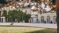 Northbrook Park is a beautiful wedding venue in Surrey. Browse our gallery of images to get inspired for your special day Beautiful Wedding Venues, Dream Wedding, Wedding Stuff, Wedding Venues Surrey, Northbrook Park, February Wedding, Botanical Wedding, Park Weddings, Wedding Gallery