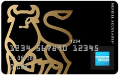 Living the luxury lifestyle means access to a wealth of perks and VIP travel benefits, especially if you're a cardholder of some of the world's most exclusive credit cards. However, a luxury card made. Credit Card Design, Luxury Card, Visa Gift Card, Black Card, Wealth, Card Making, Card Holder, Travel Stuff, Credit Cards