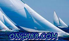 꽁머니♦️♦️♦️ONGA88.COM♦️♦️♦️꽁머니: 꽁머니☺️☺️☺️ONGA88.COM☺️☺️☺️꽁머니 Jet, Aircraft, Vehicles, Aviation, Car, Planes, Airplane, Airplanes, Vehicle