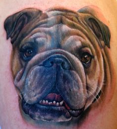 36 Best English #Bulldog #Tattoos images | Bulldog tattoo, Dogs ...