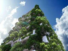 apartment,balcony,tree,vertical garden