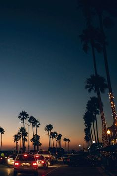 cali palm trees and a sunset