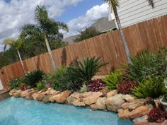 1000 ideas about landscaping around pool on pinterest - Pool fence landscaping ideas ...