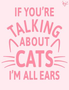 Plus, we have a few funny cat videos you just HAVE to see!