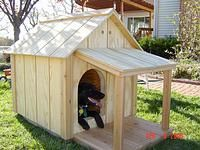 Dog House Deck with Roof Build A Dog House, Dog House Plans, Dog Ramp For Bed, Build A Frame, House Deck, Roof Styles, A Frame House, Covered Decks, Small Buildings