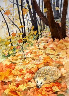 Просмотреть иллюстрацию Осень. Еж в листьях. из сообщества русскоязычных художников автора Дина Актуганова в стилях: Графика, нарисованная техниками: Акварель, Карандаш.