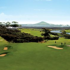 New Zealand Golf: The Carrington Club, Karikari Peninsula, North Island, Northland, I love the stop after 9 holes for lunch at their vineyard