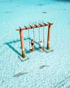 Übernachten Sie im Ayada Maldives Resort, Malediven - Maldives - Flitterwochen Logo Voyage, Voyage Usa, Voyage Europe, Maldives Voyage, Maldives Resort, Maldives Travel, Maldives Honeymoon, Maldives Beach, The Maldives