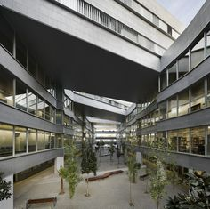 Facultad de Ciencias de la Educación  CRUZ Y ORTIZ ARQUITECTOS