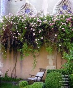 Completely private.....I'd love to have a patio with these flowers hanging over it.....they are very romantic looking...........:)