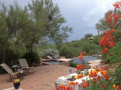 Catalina Foothills Vacation Rental - VRBO 436421 - 2 BR Tucson Estate in AZ, Private Home - Authentic, Comfortable, Views, Pool/Spa