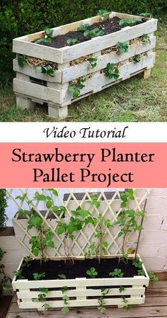 How to make a better Strawberry Pallet Planter #Pallet_gardening | Organic Gardening