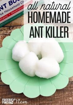 Are you hosting some uninvited guests at your home? I'm talking about ants. Eliminate these pests with a natural pesticide that is non-toxic and safe for your family and pets by making this homemade ant killer recipe. You need just sugar, Borax, water, co Ant Killer Recipe, Homemade Ant Killer, Ant Traps Homemade, Bug Control, Pest Control, Get Rid Of Ants, Rid Ants, Natural Pesticides, Pet Safe