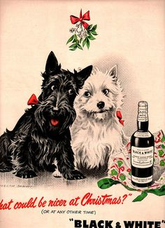 vintage scottish terrier puppies dogs 1946 advertisement whisky. $14.95, via Etsy.