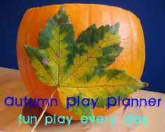 A free weekly Play Planner with play ideas for everyday of the week from nurturestore.co.uk/