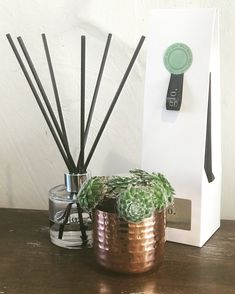 Wild Mint Diffuser also comes in a Soy candle Candle Diffuser, Soy Candles, Mint, Peppermint