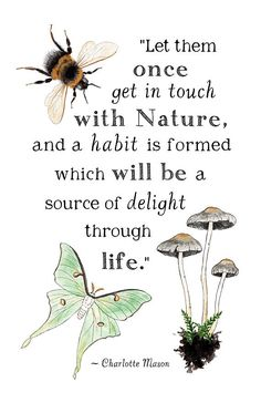 Get in Touch with Nature - Charlotte Mason Quote - 11 x 17 Poster - Educational, Natural History, Na