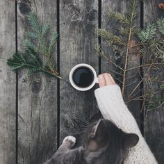 grace–upon–grace: Helena Moore (Velleities and Carefully Caught Regrets) But First Coffee, I Love Coffee, Coffee Break, Morning Coffee, Coffee Cafe, Coffee Shop, Yule, Coffee Photos, Coffee Photography