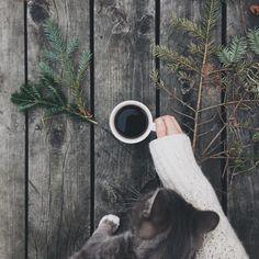 Coffee & Cat