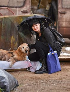 What do you think of Abby's furry friend? Check out 11 Pets on CBS You Wish Were Yours! via NCIS twitpic