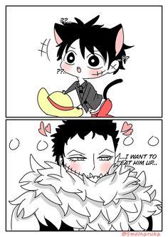 Nyaa~~ (∗´꒳`) Katakuri x Luffy[Kitty] I've been obsessed lately? [ Drawings by me c: ] One Piece Funny, One Piece Comic, One Piece Ship, One Peace, Hero Wallpaper, Fujoshi, Monkey, Anime Art, Cartoons