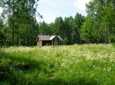 cabinporn:    A hut for hikers near the Salamajärvi national park in Finland. This old farmhouse was previously occupied by the forest ranger. Submitted by Iiro Naukkarinen.