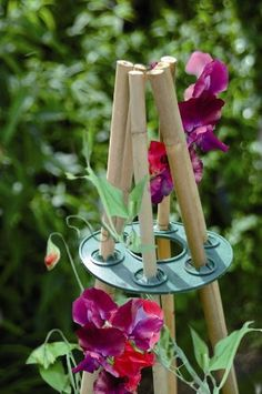 Bosmere Wigwams for making super easy teepee garden trellises for anything that likes to climb. - All About Garden Dream Garden, Garden Art, Garden Plants, Garden Shop, Jardin Decor, Garden Trellis, Bamboo Trellis, Potager Garden, Plant Supports