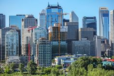 Image result for downtown buildings of calgary