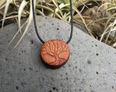 Beautifull tree of life carved on an avocado seed !!!