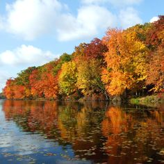 Delaware Water Gap National Recreation Area on the New Jersey-Pennsylvania border is a wonderland of forested mountains, tumbling waterfalls, Native American and Colonial historic sites, bountiful...