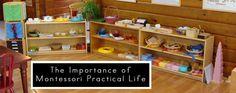 The Foundation of Montessori Education Montessori Theory, Montessori Education, Montessori Practical Life, Classroom Resources, Classroom Ideas, More Fun, Life Lessons, Foundation, Kid Stuff