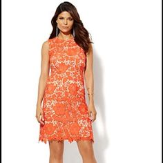 🎉HP 10/8🎉 Embroidered Floral Lace Dress Beautiful coral knee length dress. Fully lined. Only worn once to a wedding. Perfect vacation or special occasion dress! New York & Company Dresses Midi