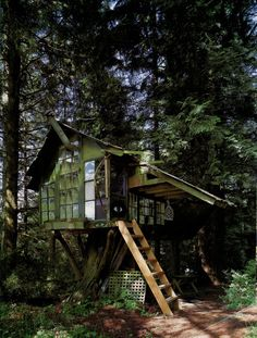Cool Tree House Ideas to Take Your Project to the Next Level. … The goal of an awe-inspiring tree house is to make it unforgettable and a place where… Cool Tree Houses, 3d Studio, In The Tree, Cabins In The Woods, Little Houses, Play Houses, Fairy Houses, Dream Houses, Tiny House