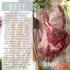 At #darwinspetfood we provide single meat source meals to ensure the meals are #balanced. #convenient  #speciesappropriate #ancestraldiet #naturalpetfood #homedelivery #customesizedorders #darwinsnaturalpetproducts