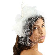 Fancy Feathers Birdcage Bridal Net Headband Fascinator Ri... https://www.amazon.com/dp/B00IRK31J2/ref=cm_sw_r_pi_dp_x_EbAMyb6ARXBBZ