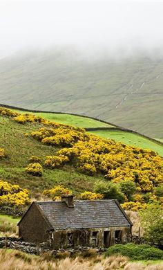 Irish landscape..