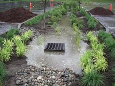 Bioretention area built at 133 State Street in Montpelier - design sponsored by EPA's 'Green Capitols' program.