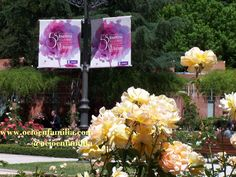 """may, 21 -Madrid (Spain) -International Rose Villa New Madrid - Your are invited to come and view the roses in the competition and an expert jury comes in to choose the winners. After a winner has been chosen, that plant is given a special place with a little plaque in the garden. """"Rosaleda Ramón Ortiz, Parque del Oeste"""" -"""