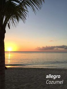 Cozumel Island, Celestial, Sunset, Beach, Water, Outdoor, Gripe Water, Outdoors, The Beach