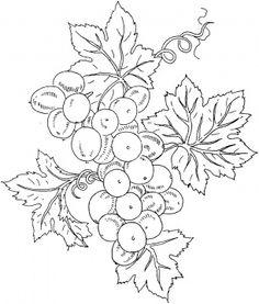 Grape 10