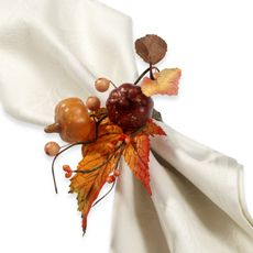 Diy fall decorations pinterest napkin rings fall leaves and napkins thanksgiving napkin ring solutioingenieria Gallery