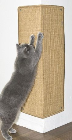 Eck-Kratzmatte XXL Corner scratchpad from Profeline. Only shipping to the EU, but basically just what I want. Diy Cat Tent, Cat Playground, Cat Scratching Post, Cat Scratcher, Cat Room, Pet Furniture, Cat Wall, Diy Stuffed Animals, Your Pet