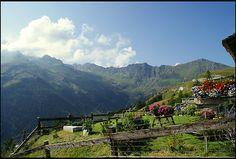 Italian mountain garden