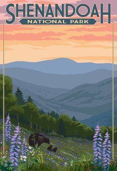 (13x19) Shenandoah National Park, Virginia - Black Bear and Cubs Spring Flowers Vintage Poster Poster http://www.amazon.com/dp/B00MEBTV9E/ref=cm_sw_r_pi_dp_cFJLub08NCHVK