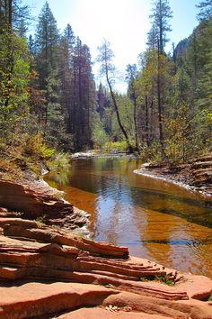 Oak Creek Canyon, Arizona. So beautiful, I didn't want to leave!