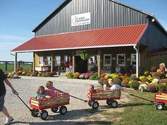 Evans Orchard: Mill, Farm Market and Pumpkin Patch Too! In Georgetown, Kentucky